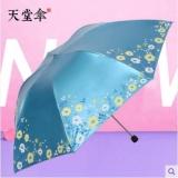 天堂伞 雪月风花 黑涤彩胶 铅笔钢伞 晴雨伞