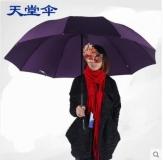 天堂伞 加大加固 雨伞三折加固 /两人伞商务伞