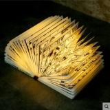 创意便携书灯—彩绘